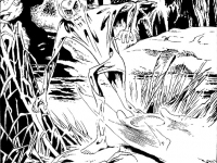 fumetti-20
