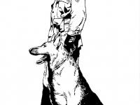 illustrazioni-31